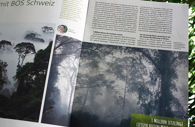 BOS_Magazin_Zusatzbild2