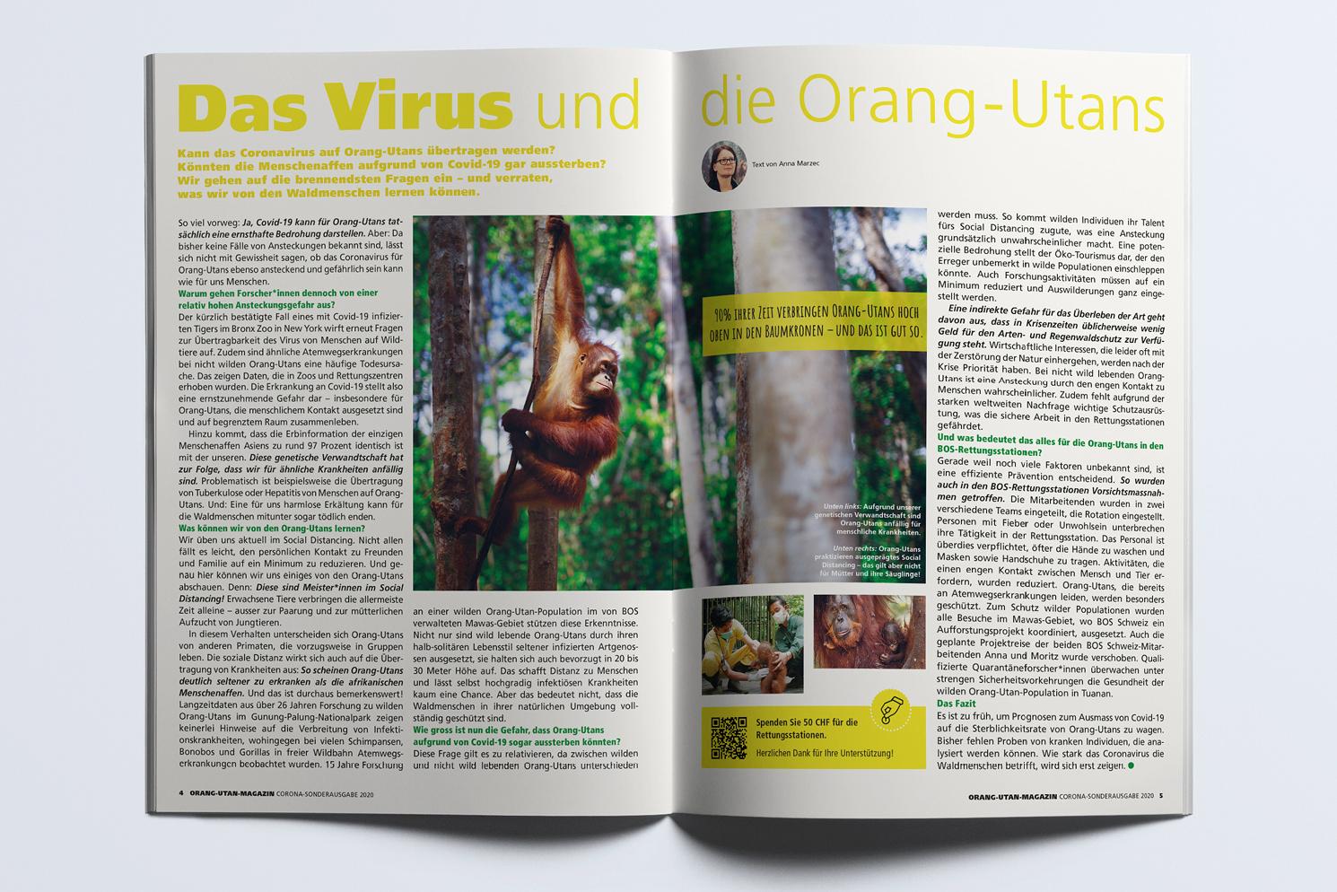 BOS_slider_Magazin10
